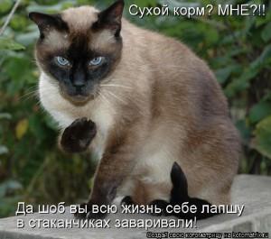 y_860ca899